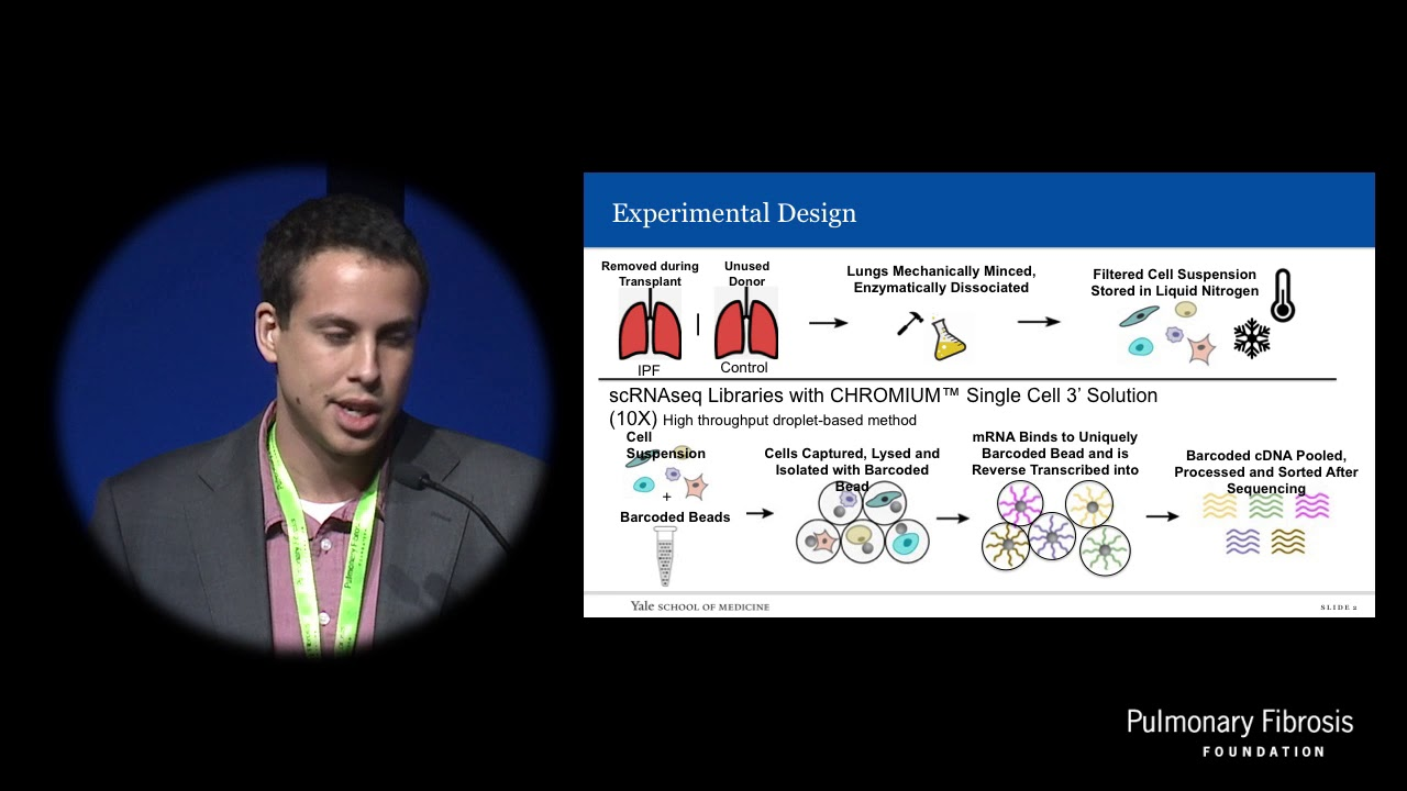 Single cell RNA-sequencing in idiopathic pulmonary fibrosis | RNA