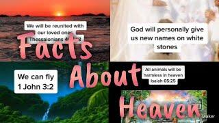 Facts about Heaven TikTok Compilation