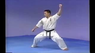 極真空手の型・平安Ⅴです。 KyokushinKata Pinan5.