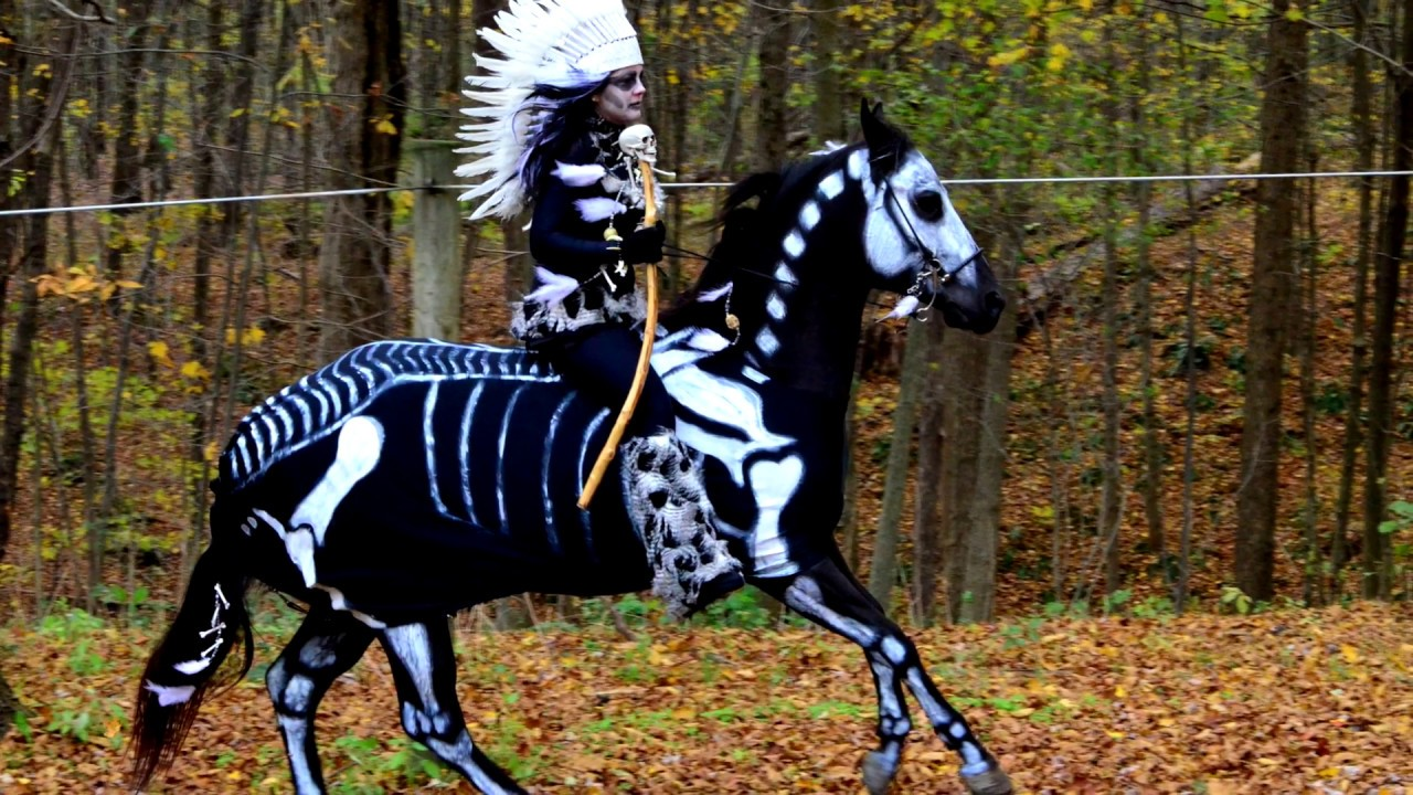 Halloween horse costumes youtube halloween horse costumes solutioingenieria Image collections