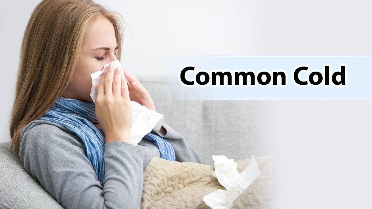 common cold and academic search Find out here all about the common cold, a viral disease that infects the upper respiratory tract and is highly infectious here, we explain the symptoms, causes, treatments, and why we catch .