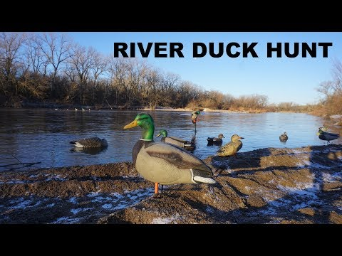 River Duck Hunting! I Knew This Would Happen...