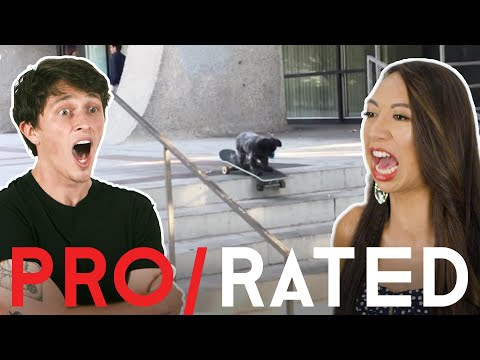 Athletes React: Martial Arts, Skateboarding & More | Pro / Rated