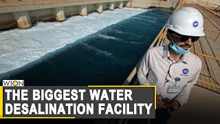WION Dispatch: Inside the world's biggest water desalination facility | World News