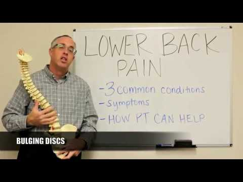 WHITEBOARD WEDNESDAY: Three Primary Causes of Back Problems