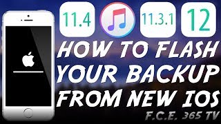 How to Restore NEWER iOS BACKUPS To OLDER iOS (In Preparation For Jailbreak) (iOS 12 Too)