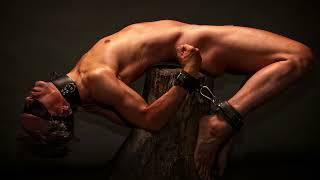 Schatten Kartell - BDSM Femdom-Buch