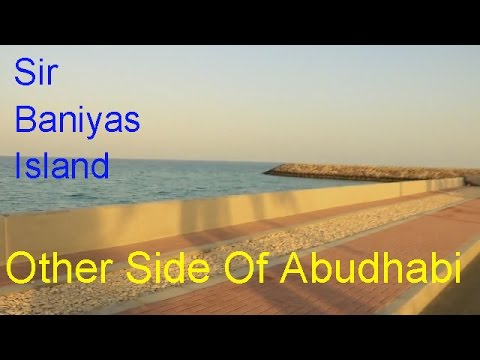 Other Side of Abu Dhabi - Sir Bani Yas Island
