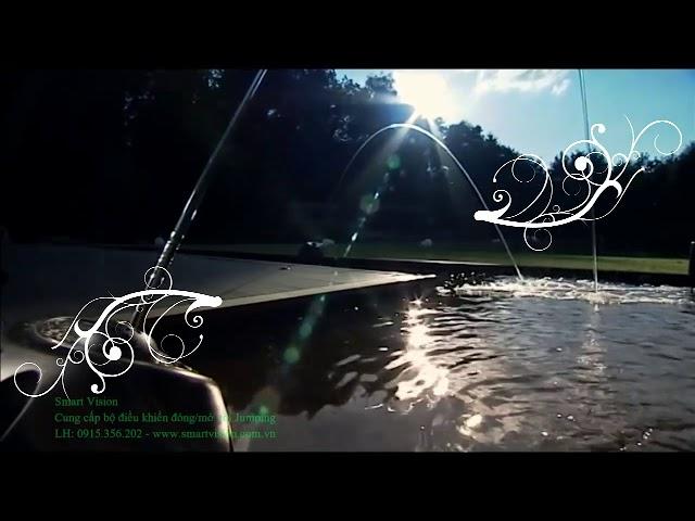 Bộ điều khiển vòi Jumping - Jumping fountain