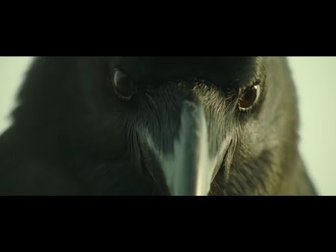 Crows Zero ● Bigger ● AMV