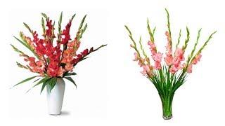 50 mẫu Cắm Hoa LAY ƠN Ngày tết - Hướng dẫn cắm hoa | Gladiolus