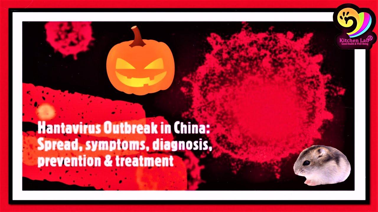 Hantavirus outbreak & Coronavirus updates| Preventive measures ...