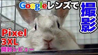 【Google Pixel 3XL】グーグルレンズがスゴすぎた!!【赤髪のとも】