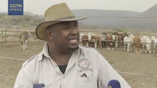 Botwana's cattle farmers struggle with drought