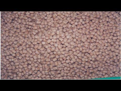 Nutrição e Alimentação de Peixes - Concentrados Proteicos