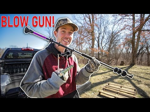 How Deadly Is A $20 BLOW GUN?? (Easy HACK To Increase POWER)