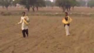 wheat sowing faisalabad pakistan dr amjad saqib farms