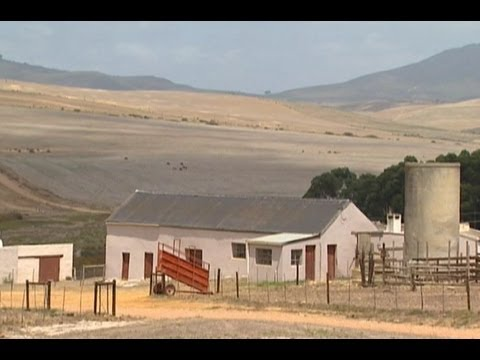 Farm scheme in South Africa raises concerns