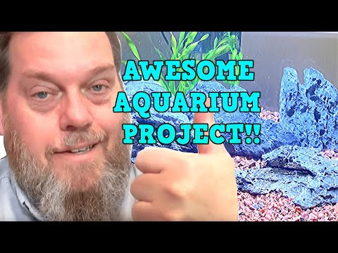 AWESOME AQUARIUM PROJECT - Stocking The Oliver Knott FLEXI-M Aquarium Kit