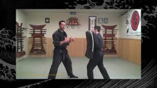 Taijutsu: Bujinkan/Ninjutsu Lesson - Ninja Training Video Blog