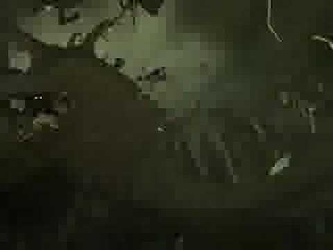 Final Fantasy 9 - U2 - Elevation - anime music video