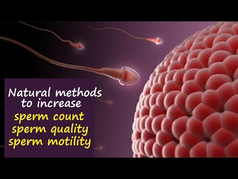 articles improving sperm motility