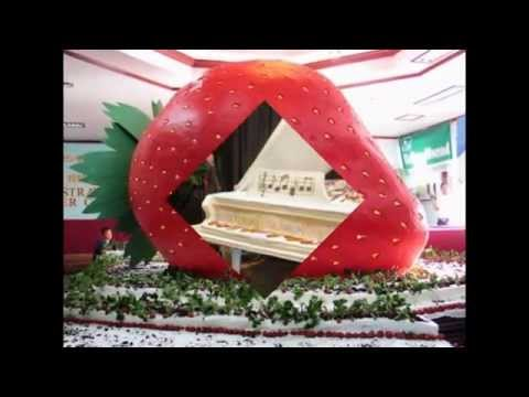 largest wedding cake ever made