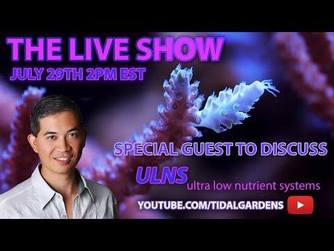 Tidal Gardens July 2017 Live Show