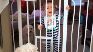 Don't Fence Me In: David's first 10 months in pics and vid