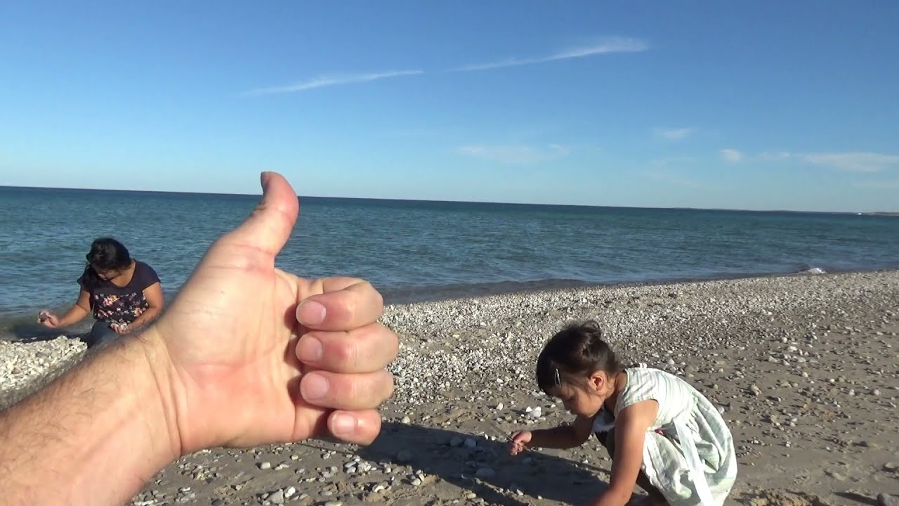 Last Beautiful October Day At The Beach Picking Up Fossils