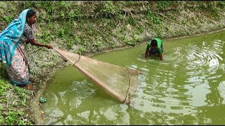 Net Fishing | Traditional cast net fishing in village | Fishing with a cast net (Part-44)