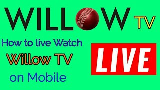 Download Willow Tv Mp3 Mkv Mp4 Youtube To Mp3 Agc Mp3