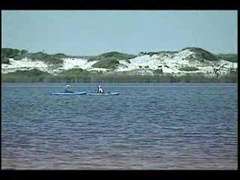 Beaches of South Walton, Florida State Parks & Nature