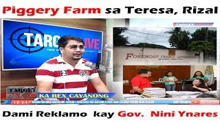 Piggery Farm  sa Teresa, Rizal Dami Reklamo  kay Gov.  Nini Ynares