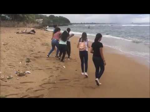 Ocean Pollution - KCS Science Project 8th Grade A