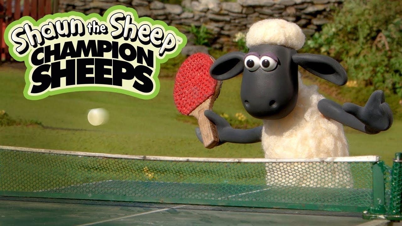 Bóng bàn | Championsheeps | Những Chú Cừu Thông Minh [Shaun the Sheep]