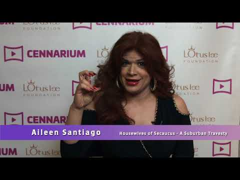 2018 Pitch Your Talent Contest - Meet Aileen Santiago