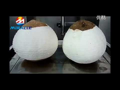 Coconut milk producing line,