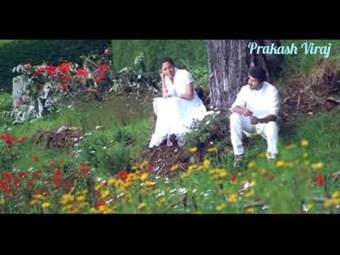 Thozha Thozha | Natpukkul Poigal Kidayathu | Pandavar Boomi | Arun | WhatsApp Status | Prakash Viraj