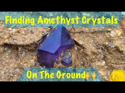 Thumbnail: The Crystal Collector gets flooded by rain but finds amethyst quartz crystals!