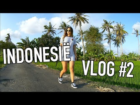 LARISSA IN INDONESIË - VLOG #2