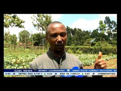 Solar powered irrigation improves farming in Kenya