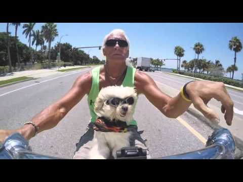 Roody The Canine King Part 1 HD Vimeo