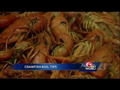Zatarain's Stops By WDSU Studios To Talk Do's And Don'ts Of Crawfish Season