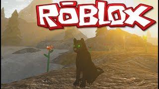OMG IT'S A LION?! -ROBLOX - CAT'S LIFE! W/WONDERWALL - GAMEPLAY
