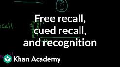 hqdefault - Recall Recognition Memory Deficits Depression