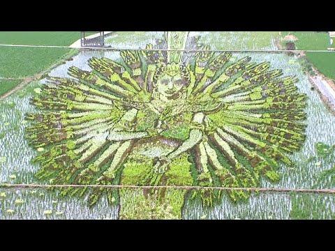 الرسم في حقول الأرزّ فن جديد يتقنة المزارعون الصينيون (فيديو) …  - نشر قبل 48 دقيقة