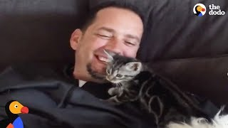 Dog Person Falls in Love with Foster Kitten And Now They're Inseparable | The Dodo