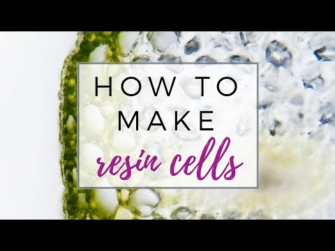 How to make cells in resin