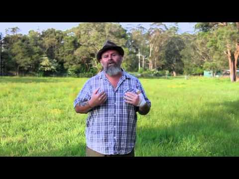 The Yarn Tree Crowd Funding Pitch